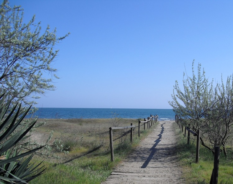 Ca'Savio beach during Spring