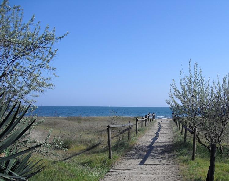 Ca'Savio beach during Spring