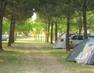 Holland at camping Ca' Savio