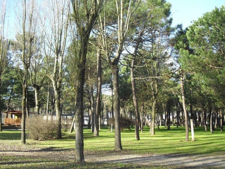 Ca' Savio mobilhomes and pitches at Ca' Savio near Cavallino Treporti