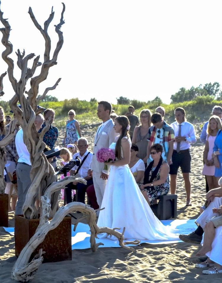casavio wedding