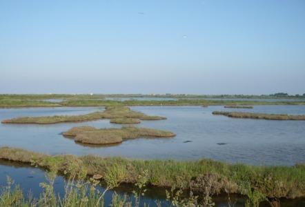 laguna Cavallino Treporti